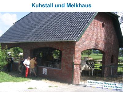 Kuhstall und Melkhaus