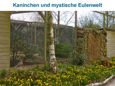 Kaninchen und mystische Eulenwelt